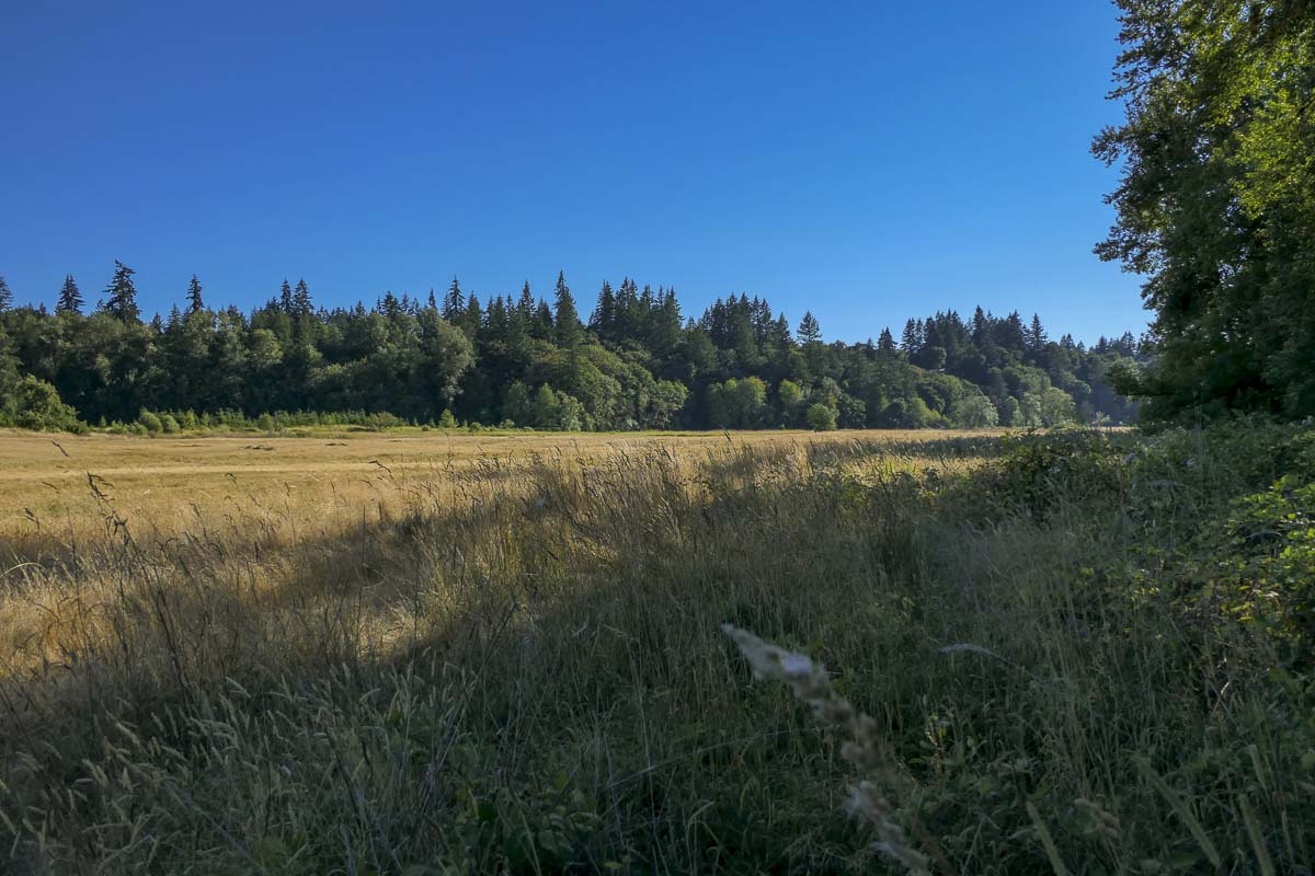 This beautiful property near Battle Ground, along the East Fork Lewis River, will soon become Lower Daybreak Regional Park. Photo by Chris Brown