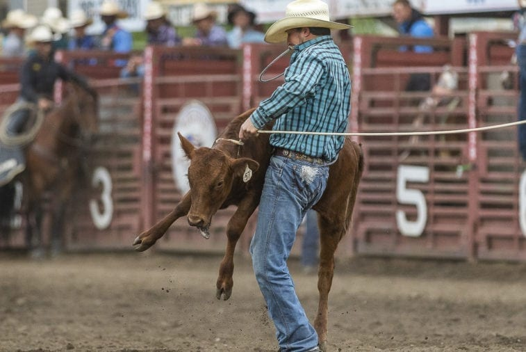 Clark-County-Today-Vancouver-Rodeo–03