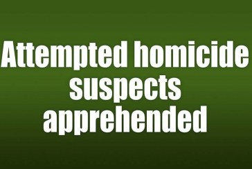 Attempted homicide suspects apprehended