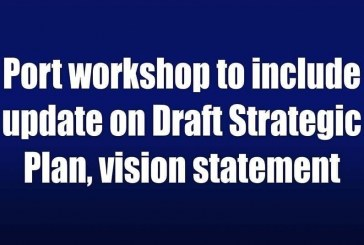 Port workshop to include update on Draft Strategic Plan, vision statement