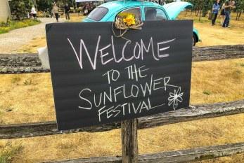 Sunflower Festival at Heisen House Vineyards