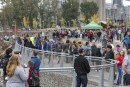 Vancouver Waterfront Park grand opening a smashing success