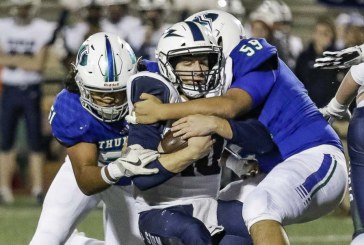 Mountain View nearly reaches perfection in playoff victory