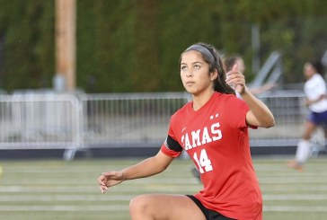 State soccer: Four local teams in Final Four