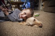 A boy and his buddy: Guide dog companions