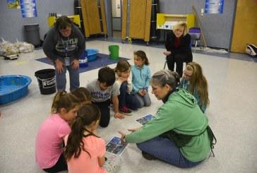 Gause Elementary reduces waste through Clark County Green Schools Program
