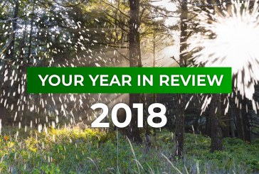 Your Year in Review: 2018