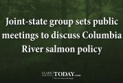 Joint-state group sets public meetings to discuss Columbia River salmon policy