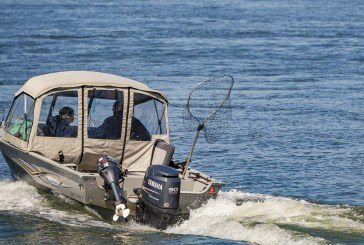 Fish and wildlife commissioners will meet to discuss Columbia River salmon reform