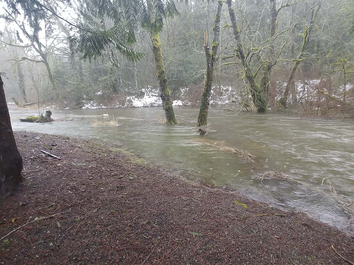 Jessica Reeves shared this photo of Chelatchie Creek in Amboy flooding this morning. Photo courtesy Jessica Reeves