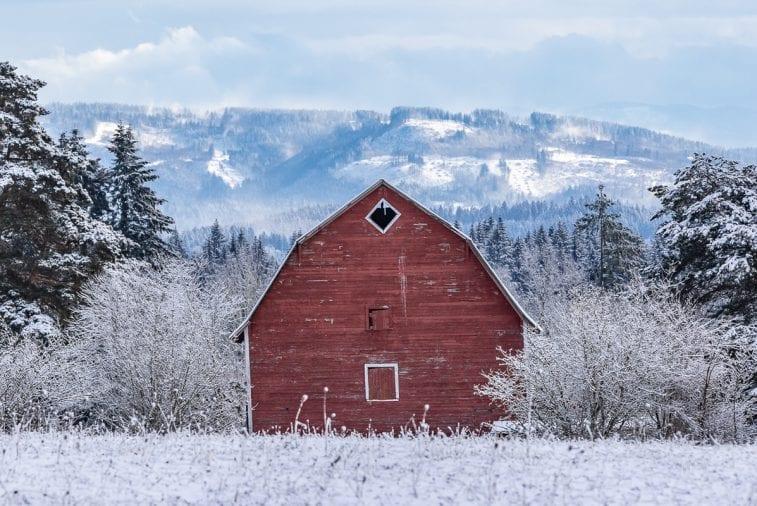 Snow-Ridgefield-2-9-19-03