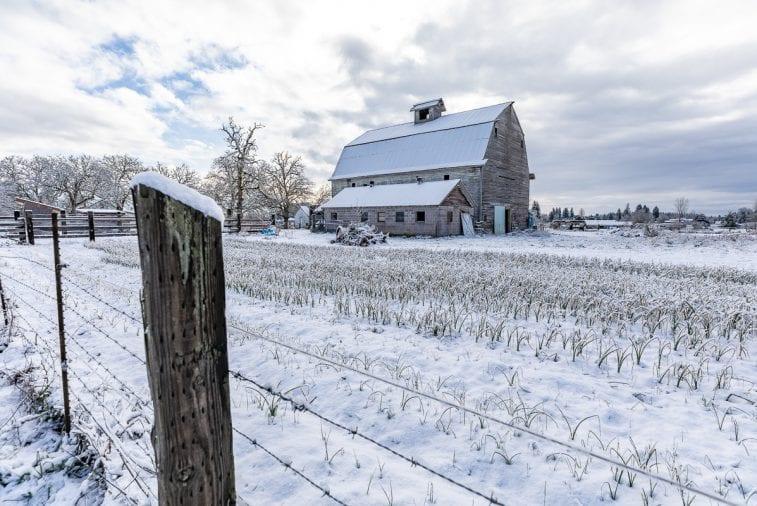 Snow-Ridgefield-2-9-19-04