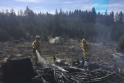 Fire District 3 crews respond to wildland fires