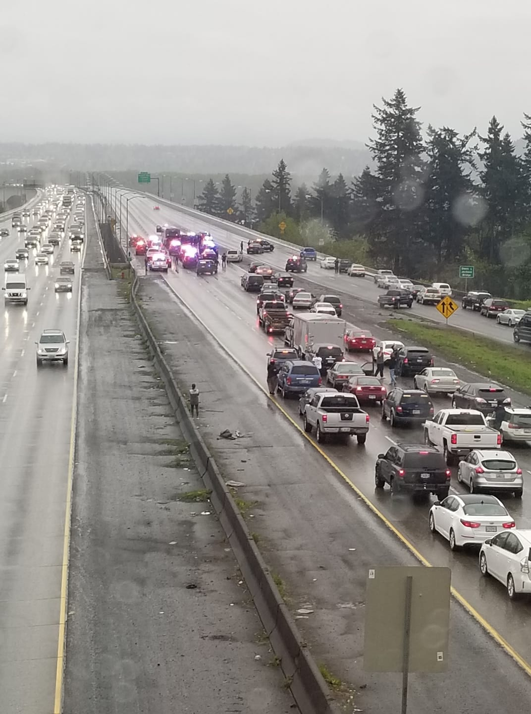 Vancouver Police surround a C-TRAN bus on I-205 after it was hijacked by a man claiming to have a gun Friday night. Photo courtesy Emily Wright