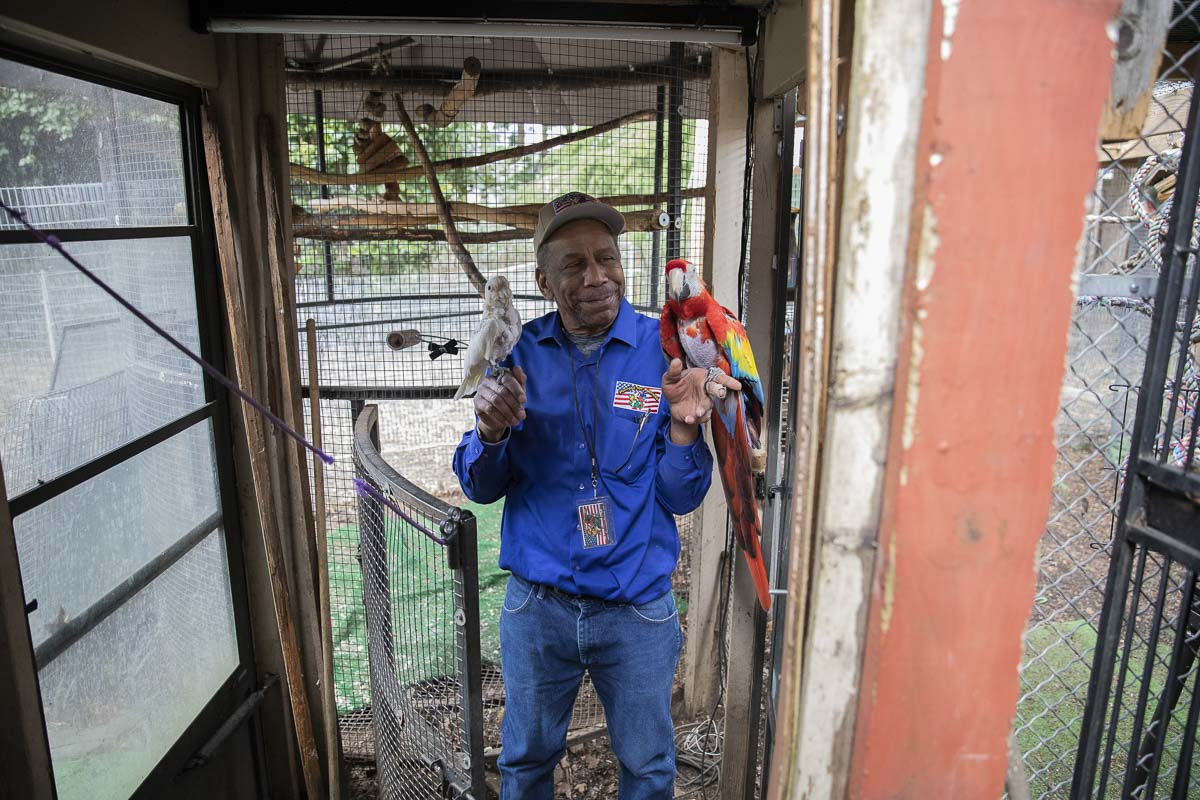 Chris Driggins holds his first ever rescue bird, Caesar, (left) and a special needs Macaw named Sunshine (right) inside the aviary he built for NW Bird Rescue and Parrots for Patriots. Photo by Jacob Granneman