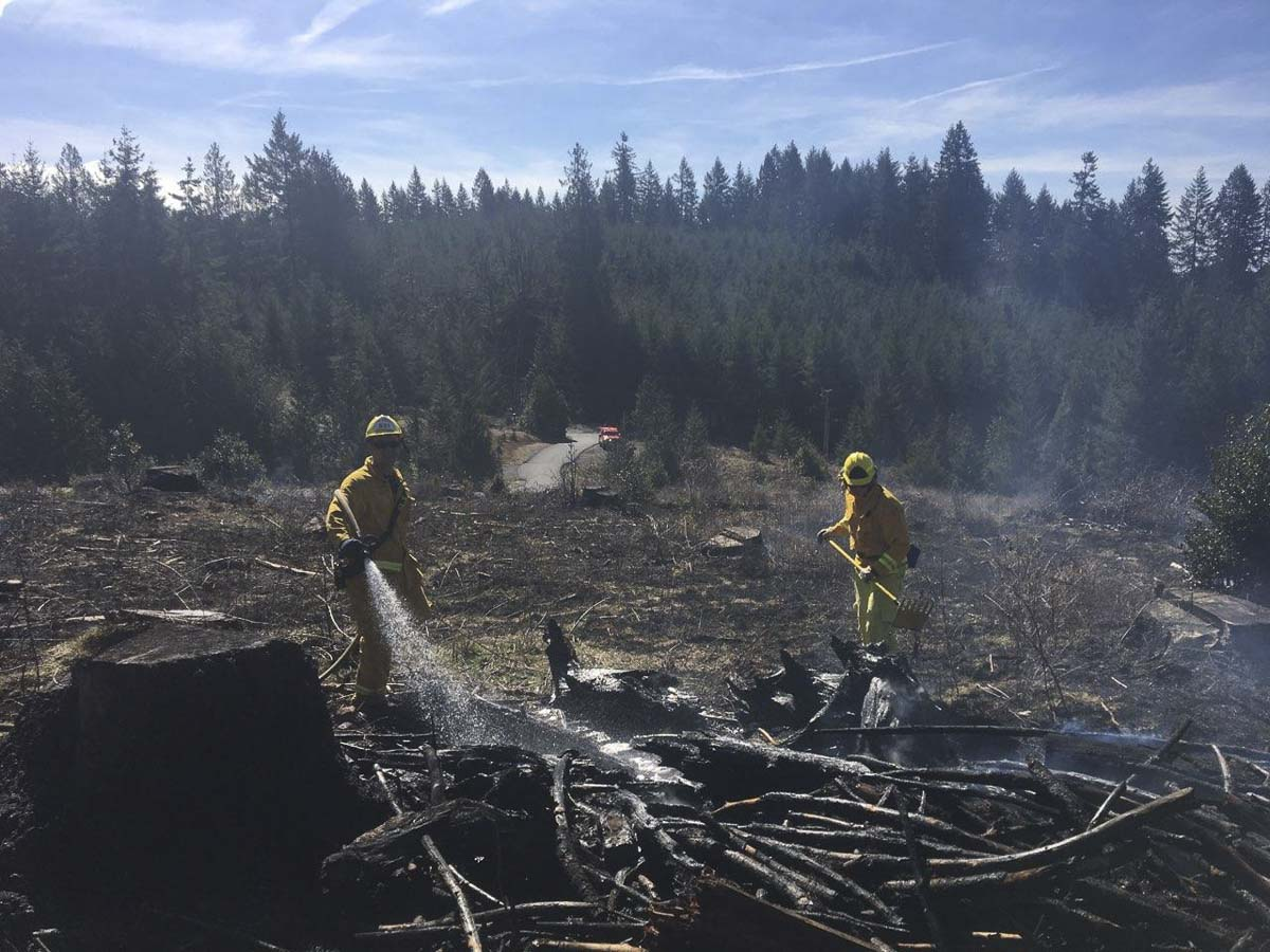 Wildland fire season came early to Clark County this year. Clark County Fire District 3 has responded to four significant incidents in the past month. Photo courtesy of Clark County Fire District 3