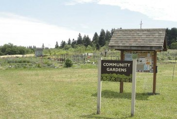 Public invited to review, discuss draft updates to 78th Street Heritage Farm Plan