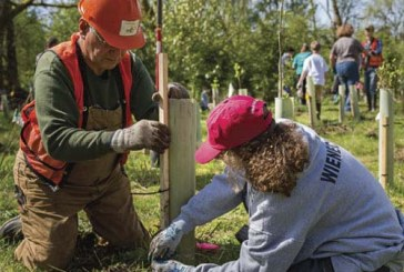 StreamTeam Earth Day Fest 2019 comes to Salmon Creek Regional Park