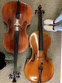 The Humane Society for Southwest Washington (HSSW) will stage a Walk/Run for the Animals' fundraising cello concert on Sat., April 27 at 7 p.m. in the HSSW adoptions lobby in Vancouver. Photo courtesy of Humane Society for Southwest Washington