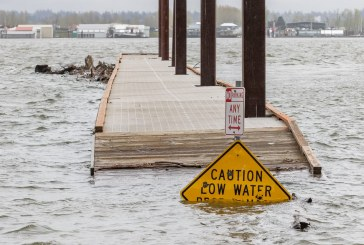 Columbia River near flood stage in Vancouver
