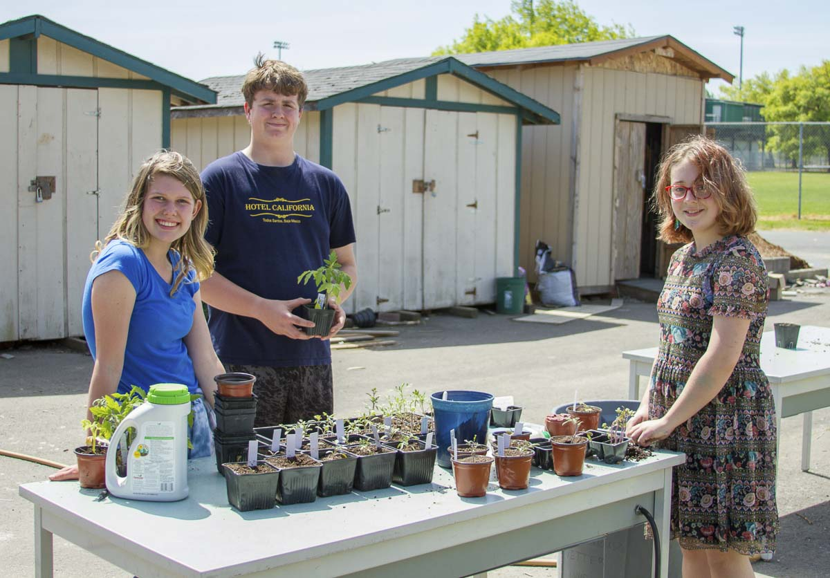Horticulture students at Woodland Middle School learn every element of growing and maintaining gardens. Photo courtesy of Woodland School District