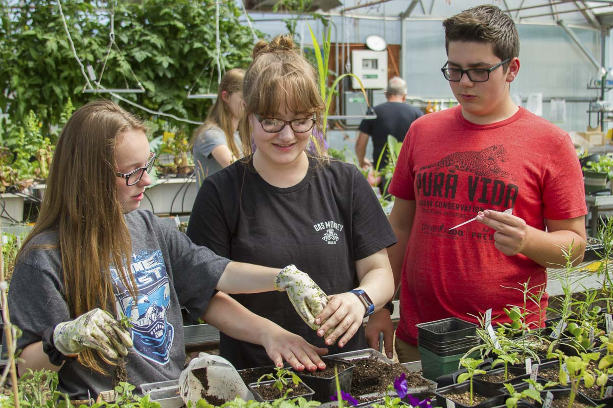 Students make their own organic pesticides and herbicides to grow plants from seed to harvest. Photo courtesy of Woodland School District