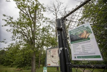 Washougal asks for volunteers to maintain community parks