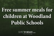 Free summer meals for children at Woodland Public Schools