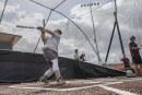 Homegrown Raptors: Jack Bauer's baseball journey brings him back to Clark County