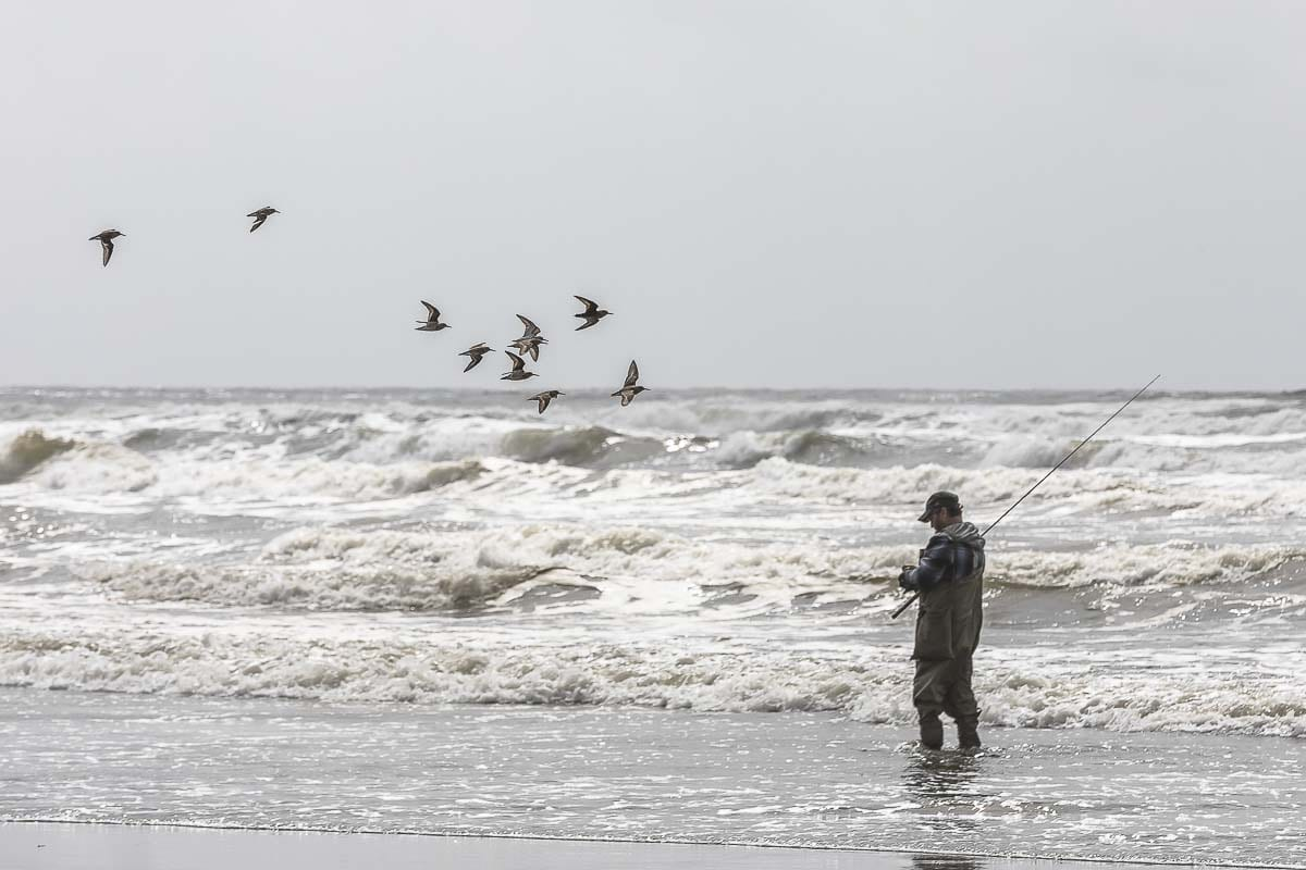 man fishes with waders in the waves just offshore from the town of Long Beach, Washington. Photo by Mike Schultz