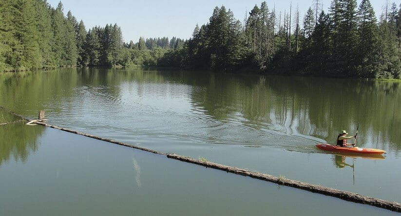 Clark County Public Health issues blue-green algae advisories for Lacamas and Round lakes