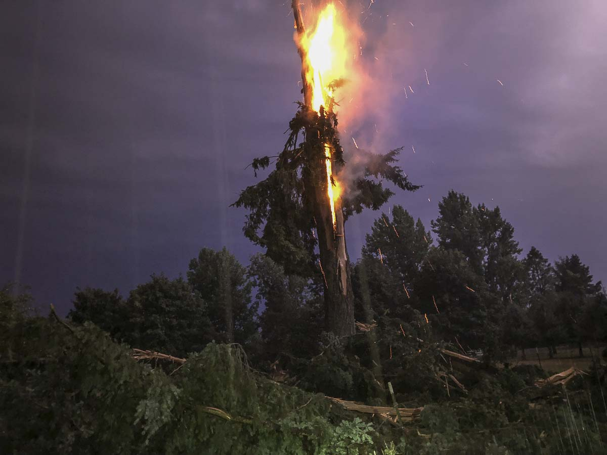 A homeowner near La Center caught this photo of a tree on fire after lightning struck it early on Thursday morning. Photo courtesy Kristeen Millett