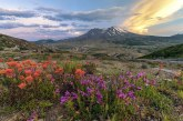 Pacific Northwest Day Trips: Mt. St. Helens
