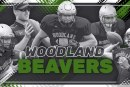 Woodland Beavers Team Preview 2019