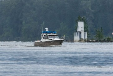 Wildlife commissions to discuss Columbia River salmon policies