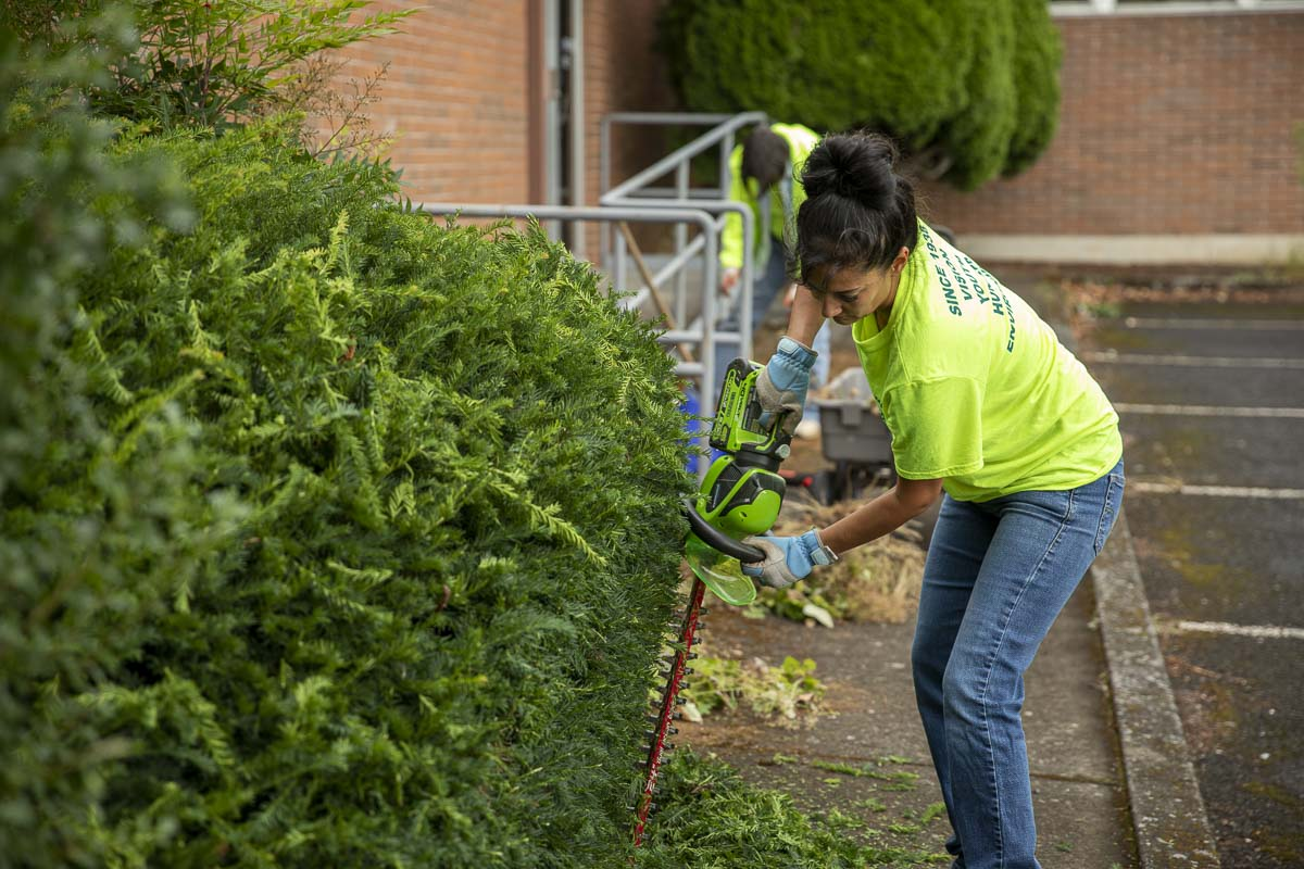 Stepanie O'Dell, membership chair of Camas Lions Club, is seen here trimming hedges at the Inter-Faith Treasure House cleanup. Photo by Jacob Granneman