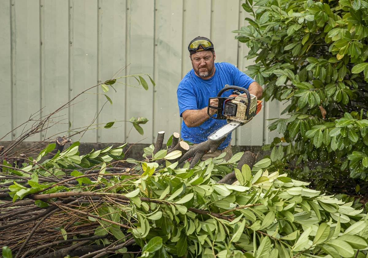 A Camas Lions Club member cuts branches to remove a laurel hedge at the Inter-Faith Treasure House cleanup. Photo by Jacob Granneman