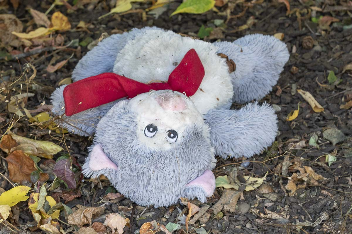 A child's toy lies abandoned along Burnt Bridge Creek trail in Vancouver's Arnold Park. Photo by Mike Schultz