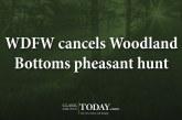 WDFW cancels Woodland Bottoms pheasant hunt