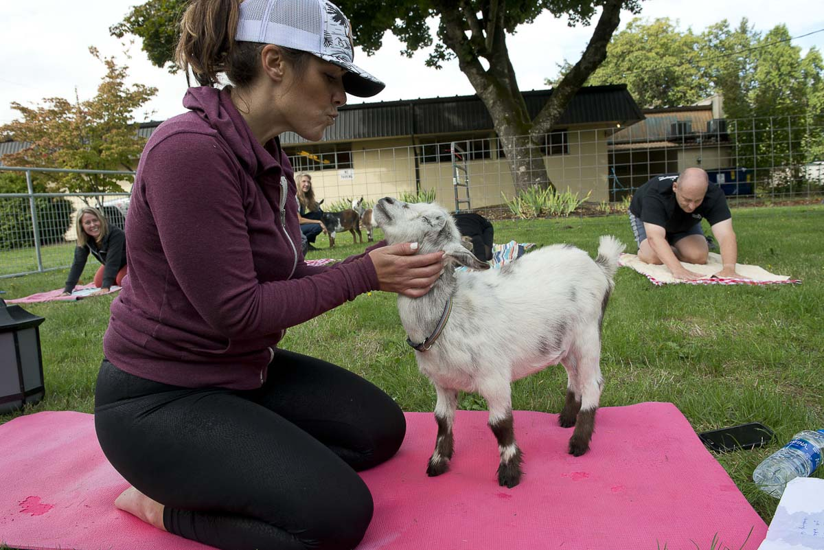 Kristina Rasmussen-Becker of Barre 3 Felida led a goat yoga class in Battle Ground's central park to support the North County Community Food Bank's Give More 24! Campaign. Photo courtesy of Community Foundation for Southwest Washington