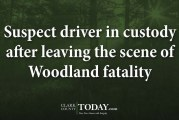 Suspect driver in custody after leaving the scene of Woodland fatality