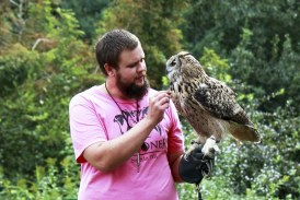 Raptors, reptiles and prehistoric fish to be featured during Sturgeon Festival