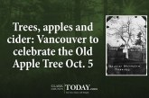 Trees, apples and cider: Vancouver to celebrate the Old Apple Tree Oct. 5