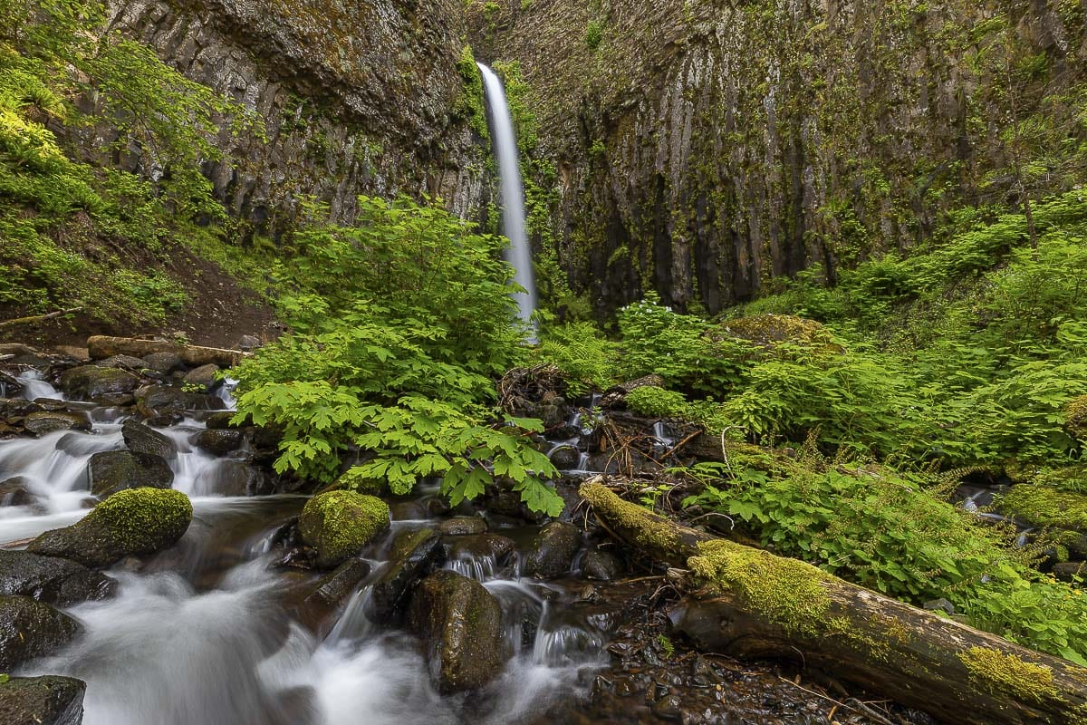 Shown here is Dry Creek Falls, which lies further east into the Columbia River Gorge. Photo by Mike Schultz