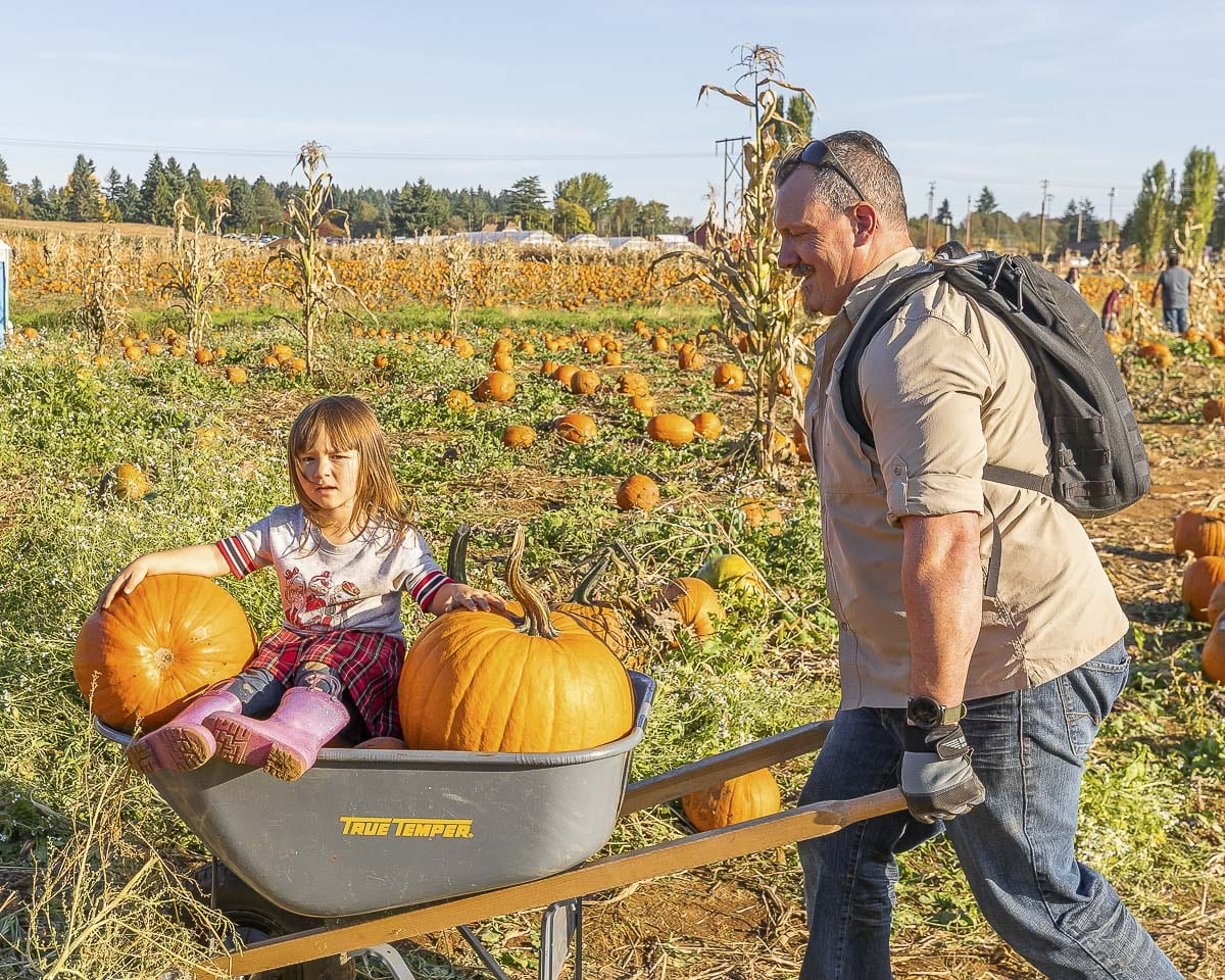 Jeremy and Elizabeth Zonker of Vancouver return from the pumpkin patch after finding the perfect ones to take home. Photo by Mike Schultz