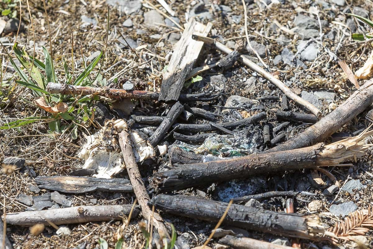 Fires are not allowed in Arnold Park, but numerous signs of small campfires can be seen all over the urban open space. Photo by Mike Schultz