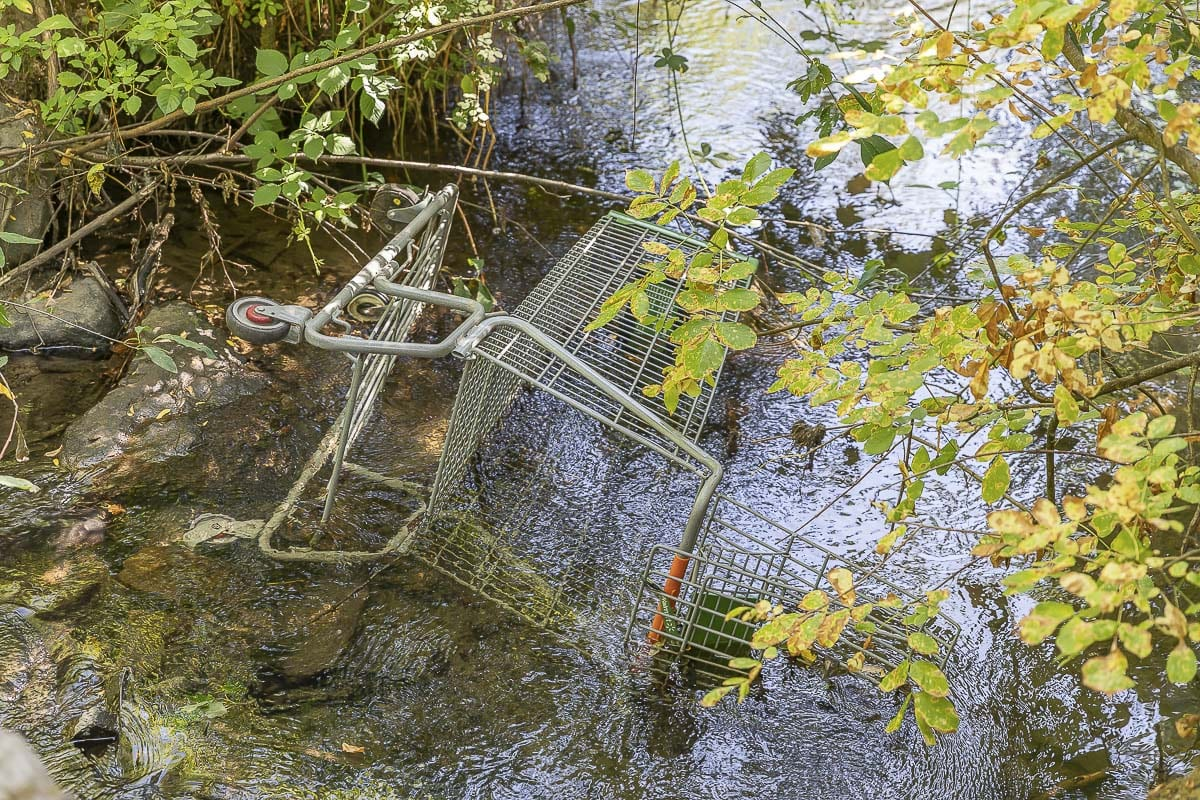 An abandoned shopping cart is one of many that can be found along Burnt Bridge Creek greenway in west Vancouver. Photo by Mike Schultz