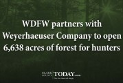 WDFW partners with Weyerhaeuser Company to open 6,638 acres of forest for hunters