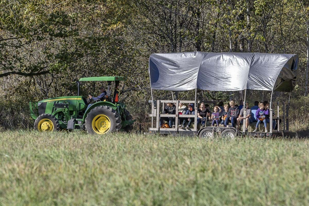 "The nearly mile-long hayride at Pomeroy Farm is how visitors get to the pumpkin patch as well as how they can see some 100 ""Pumpkin People"" dressed up in funny scenes across the farm. Photo by Mike Schultz"