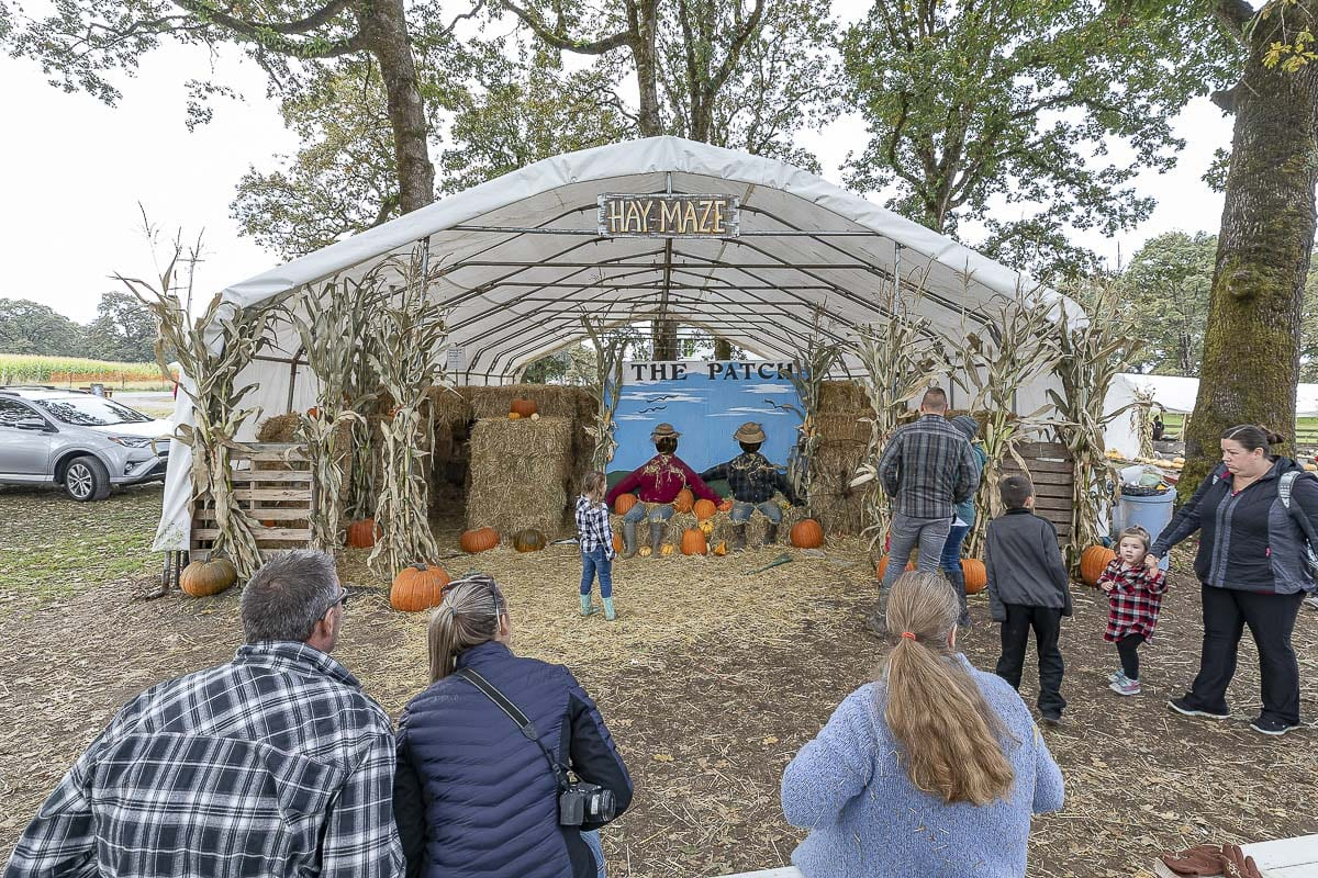 The Patch's covered hay maze is a great activity even if it rains, and it is free. Photo by Mike Schultz